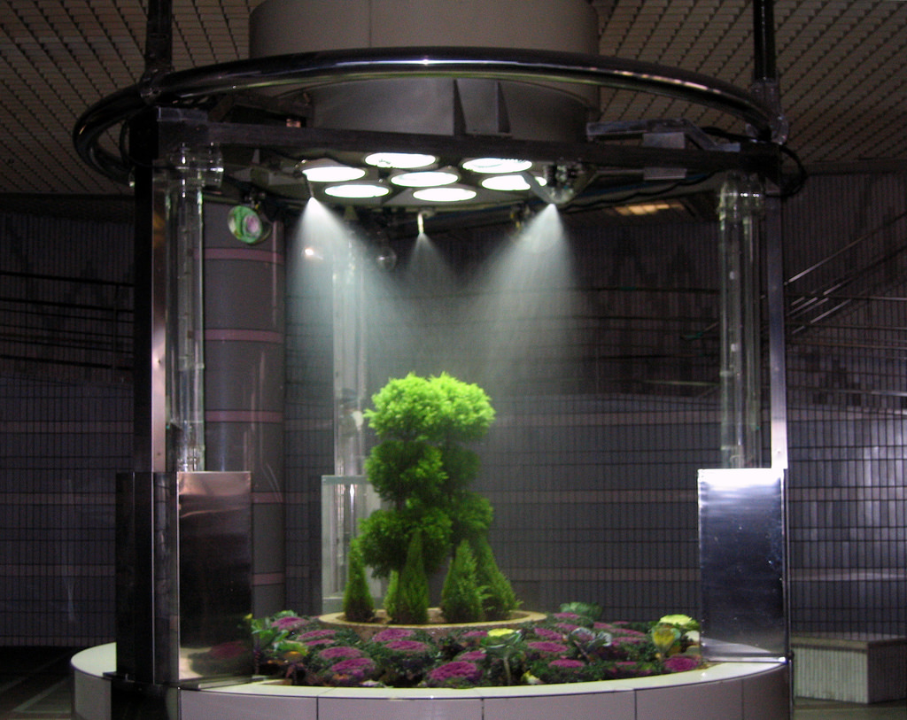 Why Led Lights Are Ideal For Indoor Gardens Superior Lighting