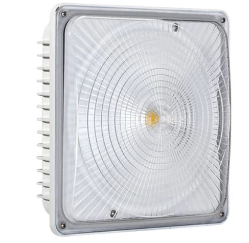 LED Ceiling Mount Canopy Fixture