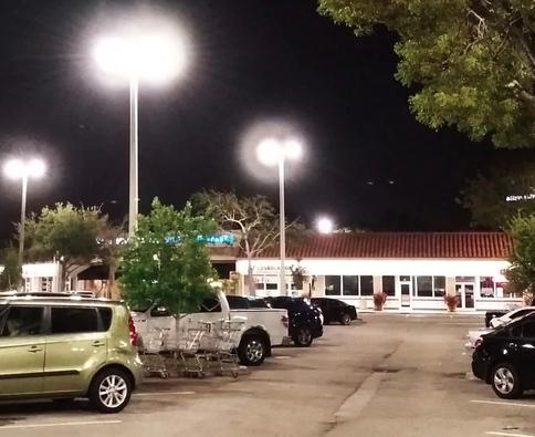 LED Directional Landscape Lights